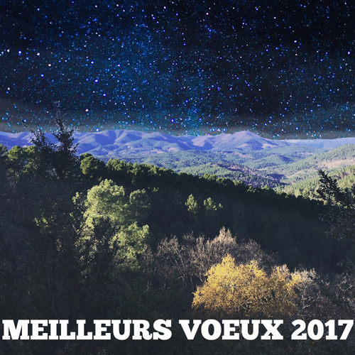 2017Voeux